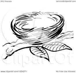 nest bird clipart branch vector picsburg