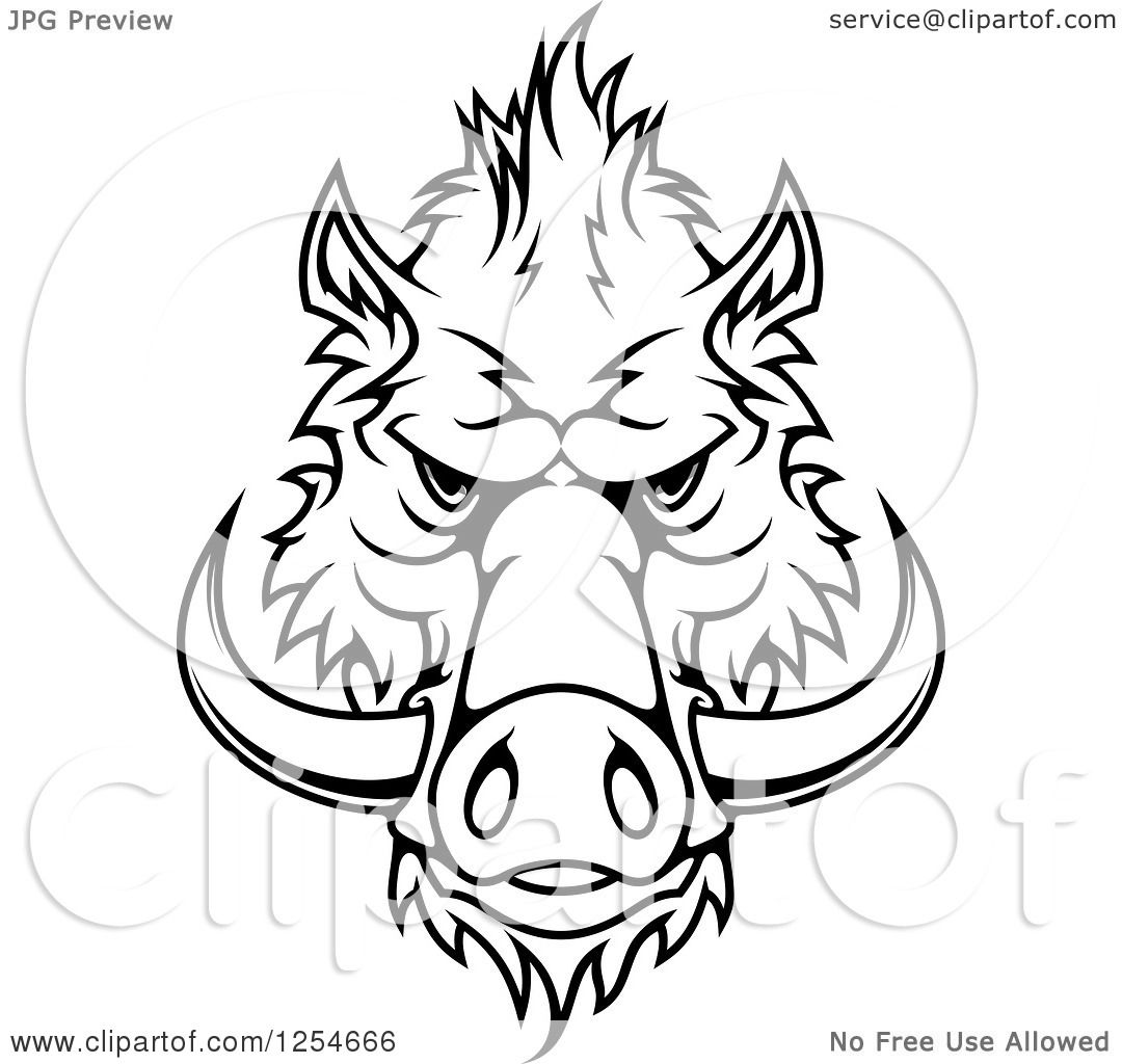 Clipart Of A Black And White Boar Face