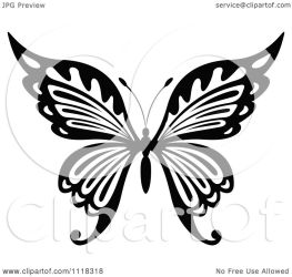 butterfly clipart vector illustration graphics royalty seamartini cartoon tradition sm background