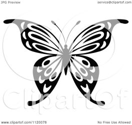 butterfly clipart illustration vector royalty tradition sm seamartini graphics copyright clipartof regarding notes