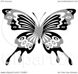 butterfly illustration clipart vector royalty tradition sm graphics regarding notes
