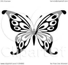butterfly illustration clipart vector royalty tradition sm background graphics