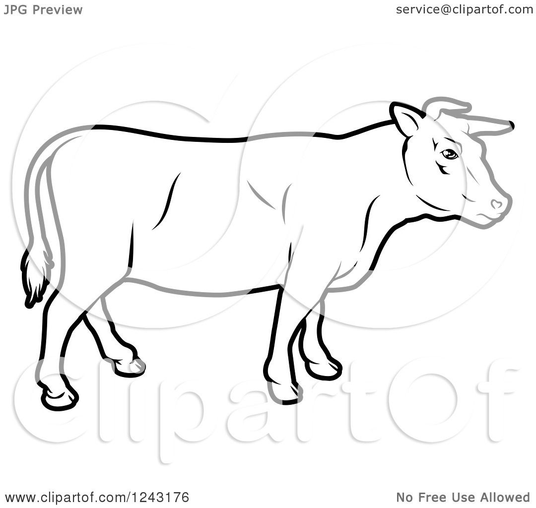 Clipart Of A Black And White Cow In Profile