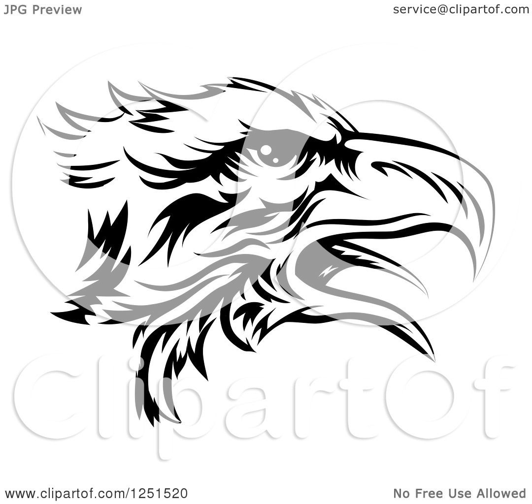 Clipart Of A Black And White Eagle Head In Profile