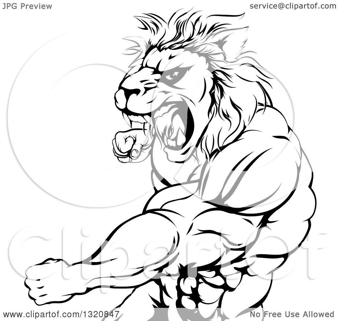 Clipart Of A Black And White Fierce Angry Muscular Lion