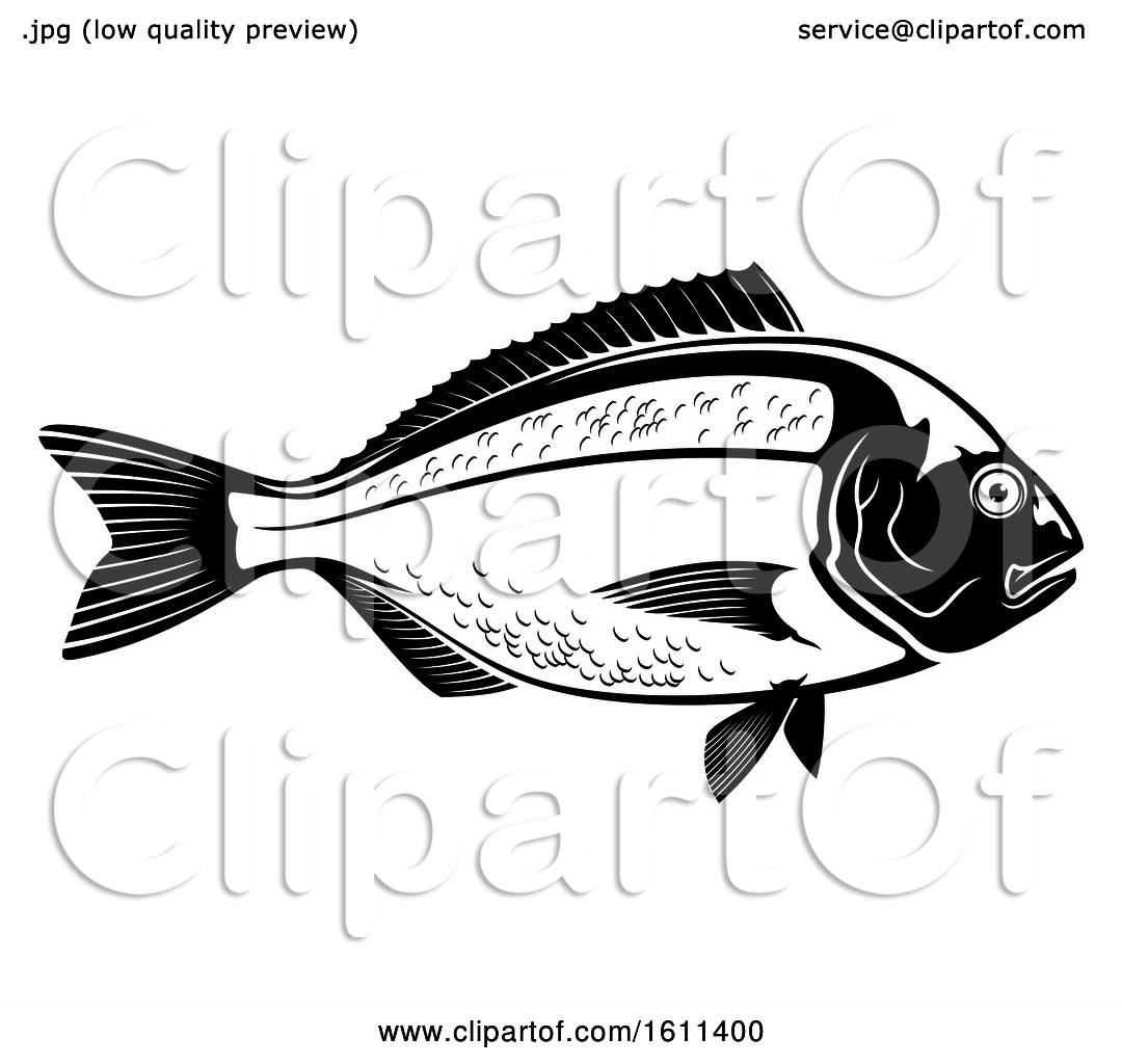 Clipart Of A Black And White Fish