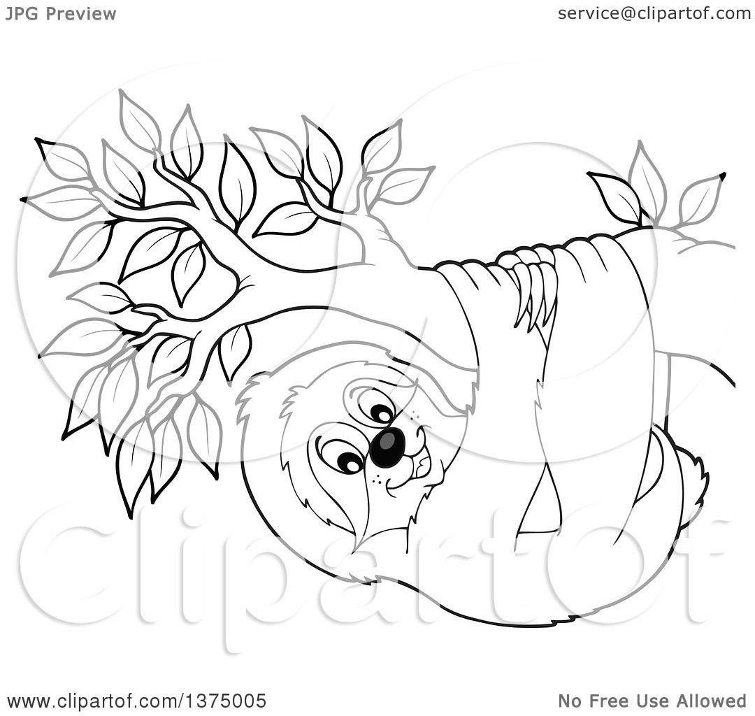 Clipart Of A Black And White Happy Sloth Hanging From A