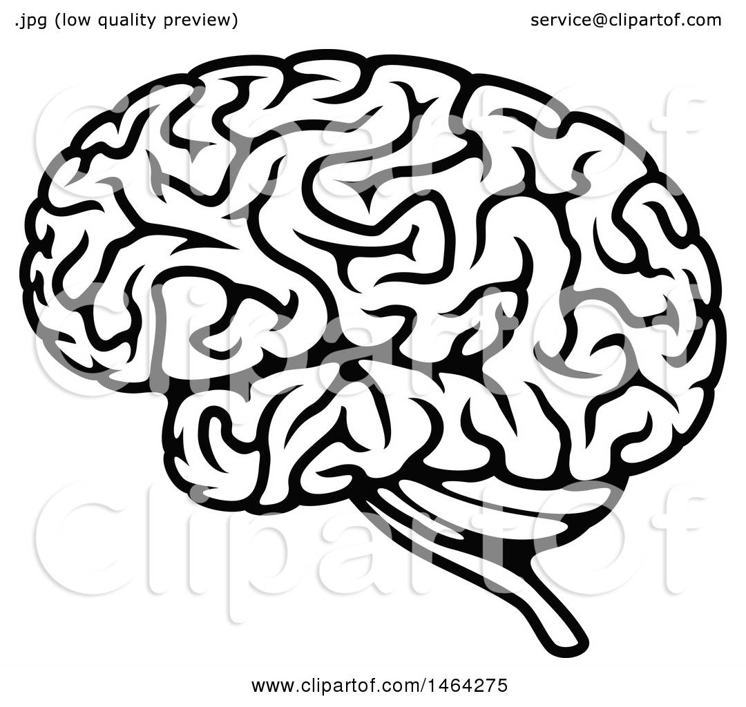 hight resolution of clipart of a black and white human brain royalty free vector illustration by vector tradition