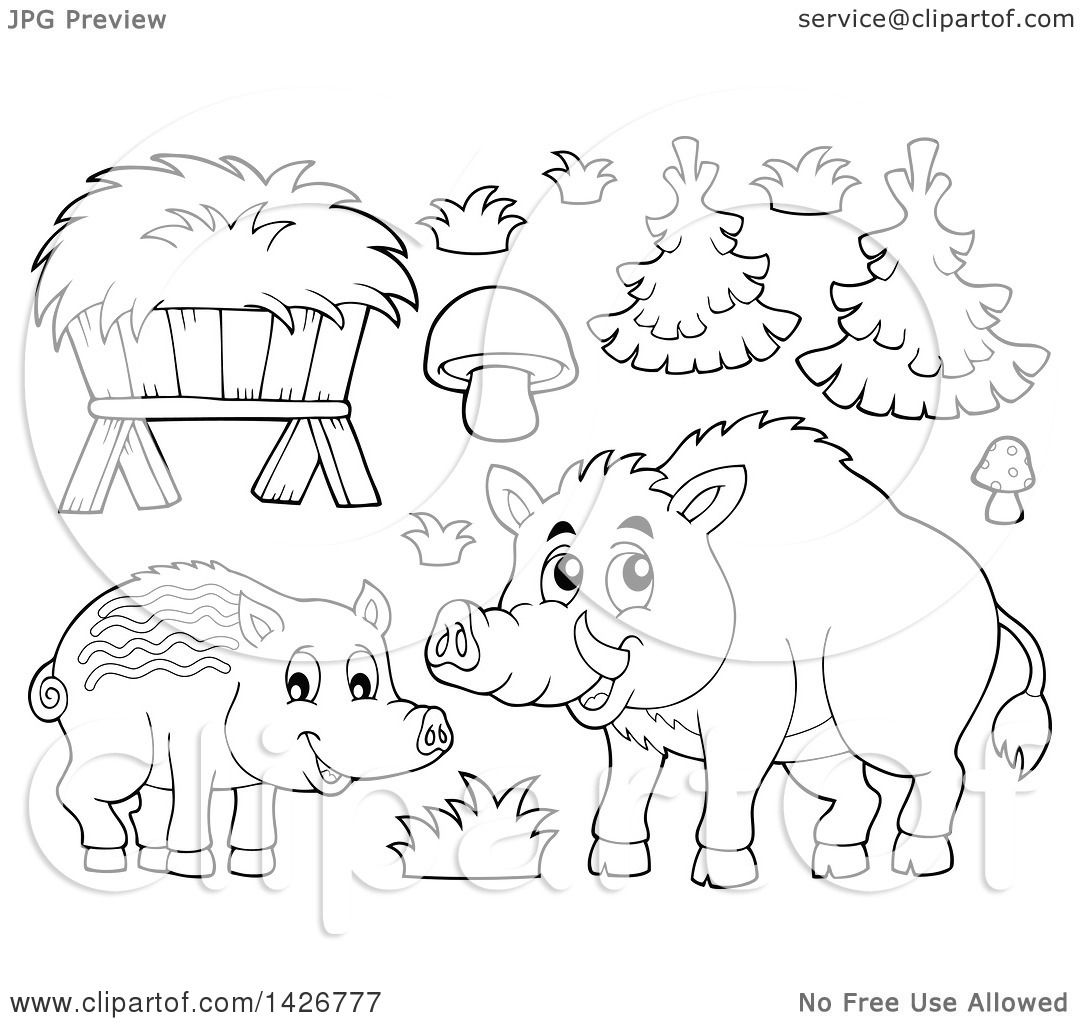 Clipart Of A Black And White Lineart Razorback Boar Mother