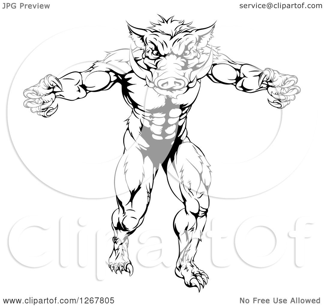 Clipart Of A Black And White Muscular Aggressive Boar Man