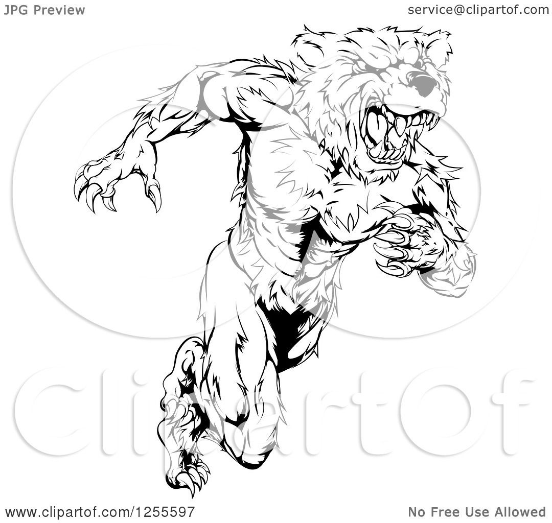 Clipart Of A Black And White Muscular Bear Man Running