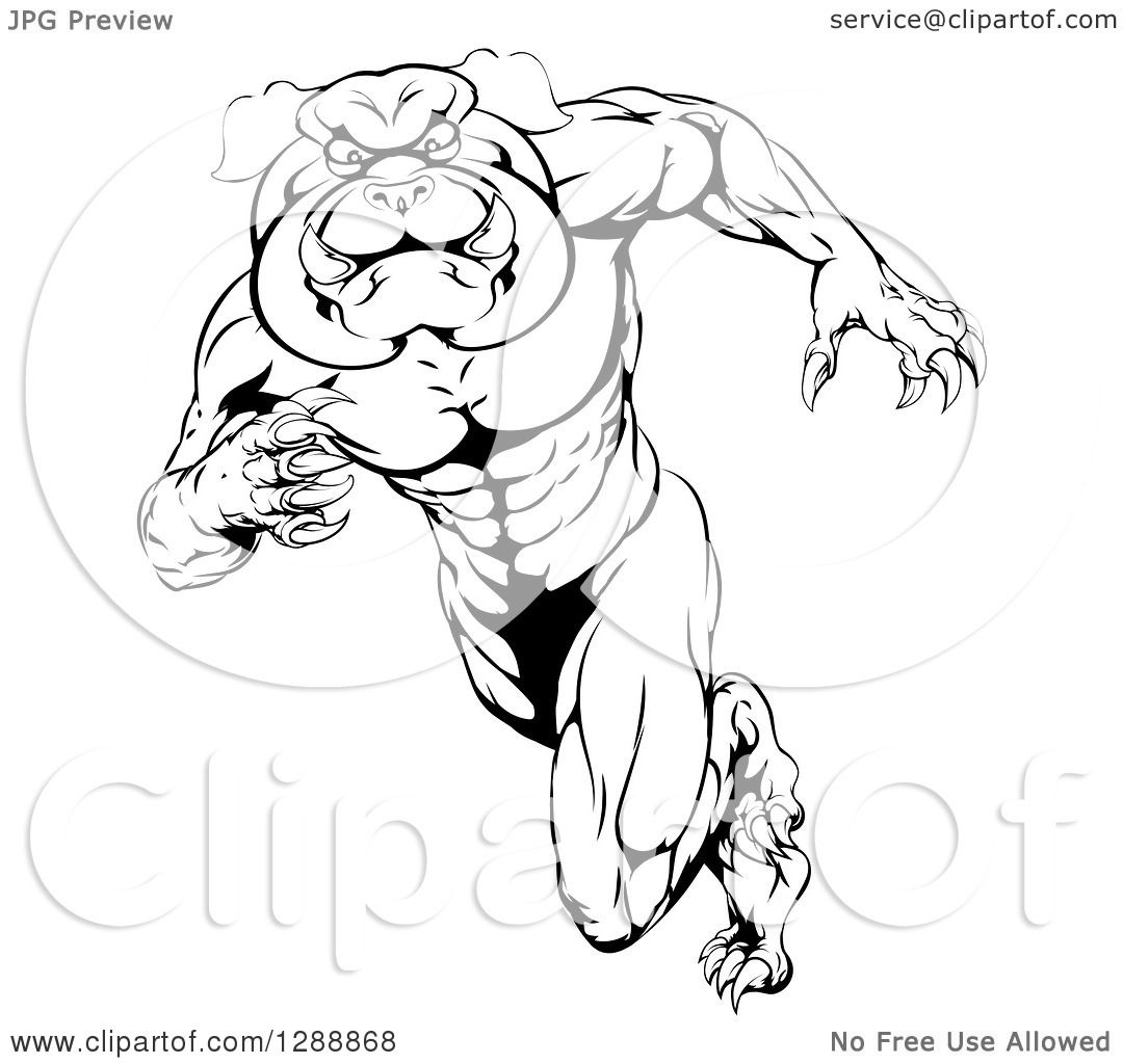 Clipart Of A Black And White Muscular Tough Bulldog Man