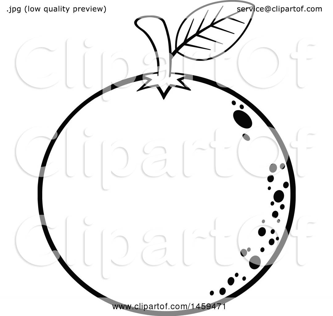 Clipart Of A Black And White Navel Orange Fruit