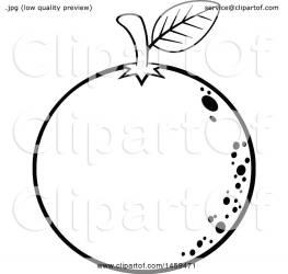 orange fruit clipart illustration navel vector clip royalty toon hit collc0037
