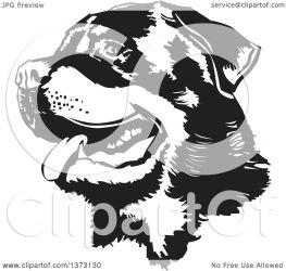 rottweiler face dog clipart illustration vector panting royalty david rey copyright