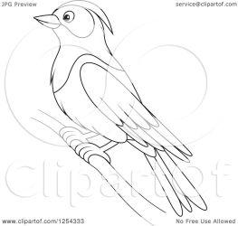 purple martin bird clipart illustration vector alex royalty bannykh