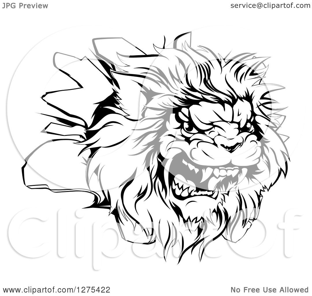 Clipart Of A Black And White Roaring Angry Lion Head