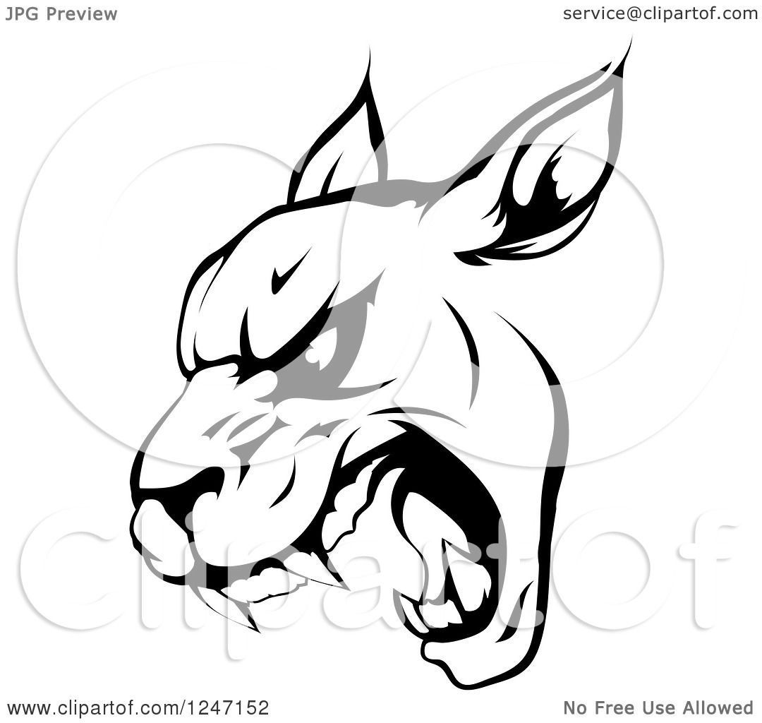 Clipart Of A Black And White Roaring Panther Mascot Head