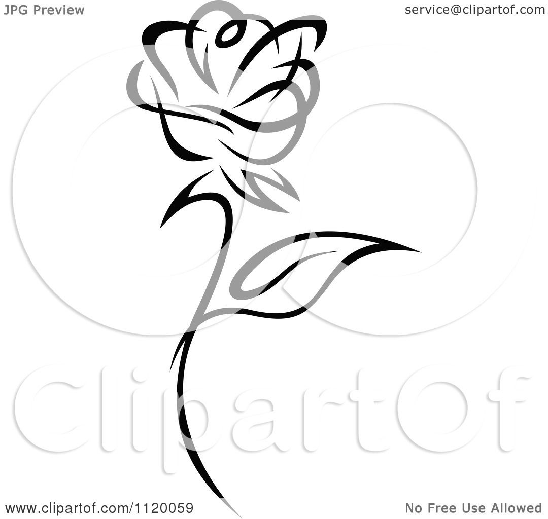 Clipart Of A Black And White Rose Flower 1