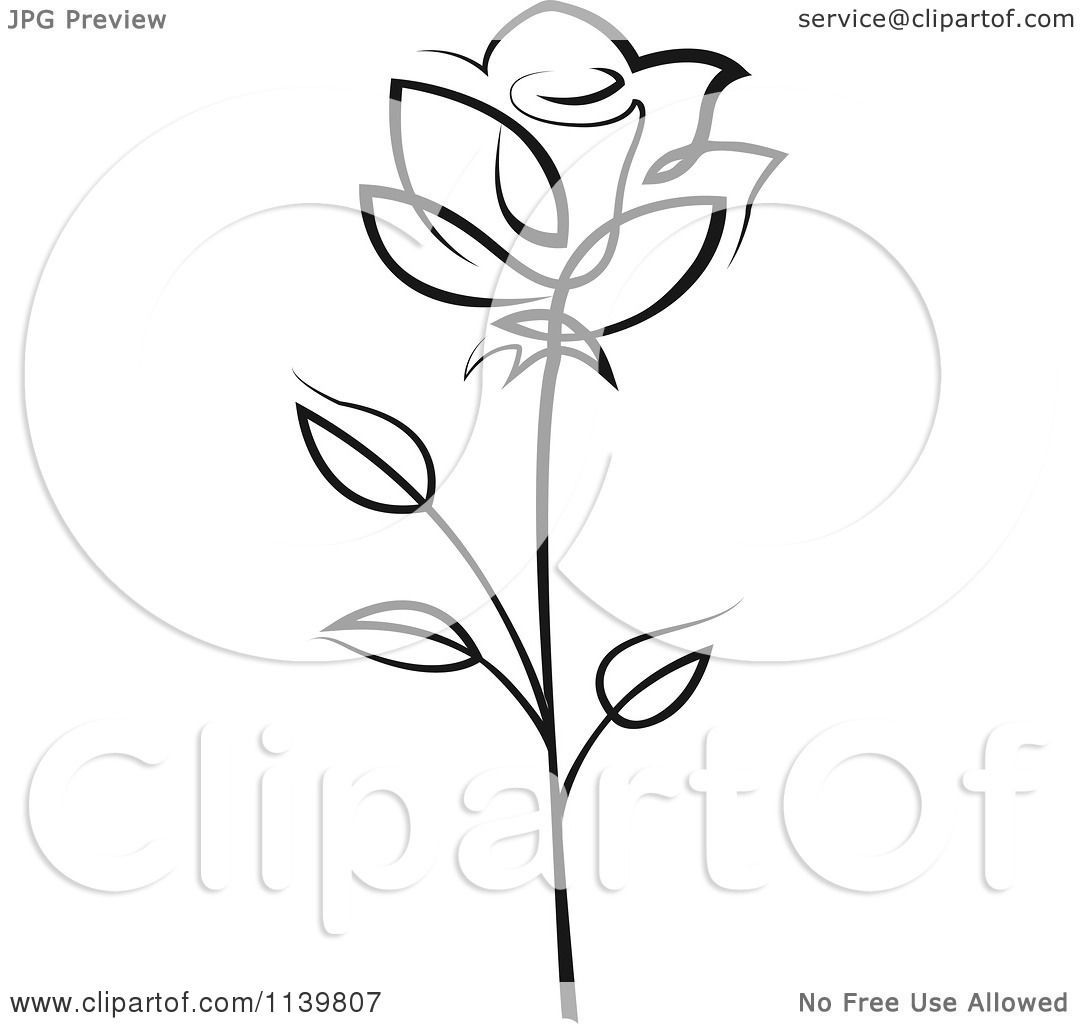Clipart Of A Black And White Rose Flower 17