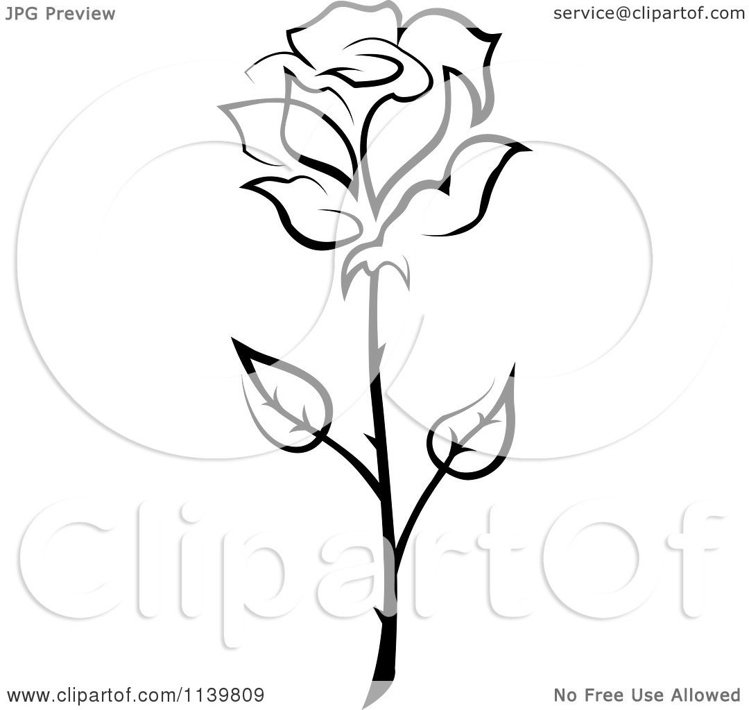 Clipart Of A Black And White Rose Flower 20
