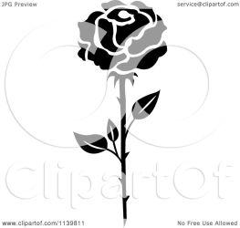 rose flower illustration clipart vector royalty seamartini transparent graphics background regarding notes