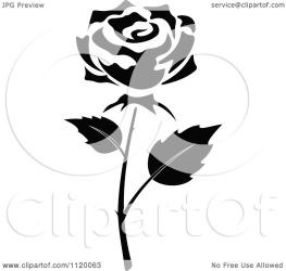 rose flower vector clipart illustration background royalty roses tradition sm cartoon clip amagico drawing hd cartoons graphics
