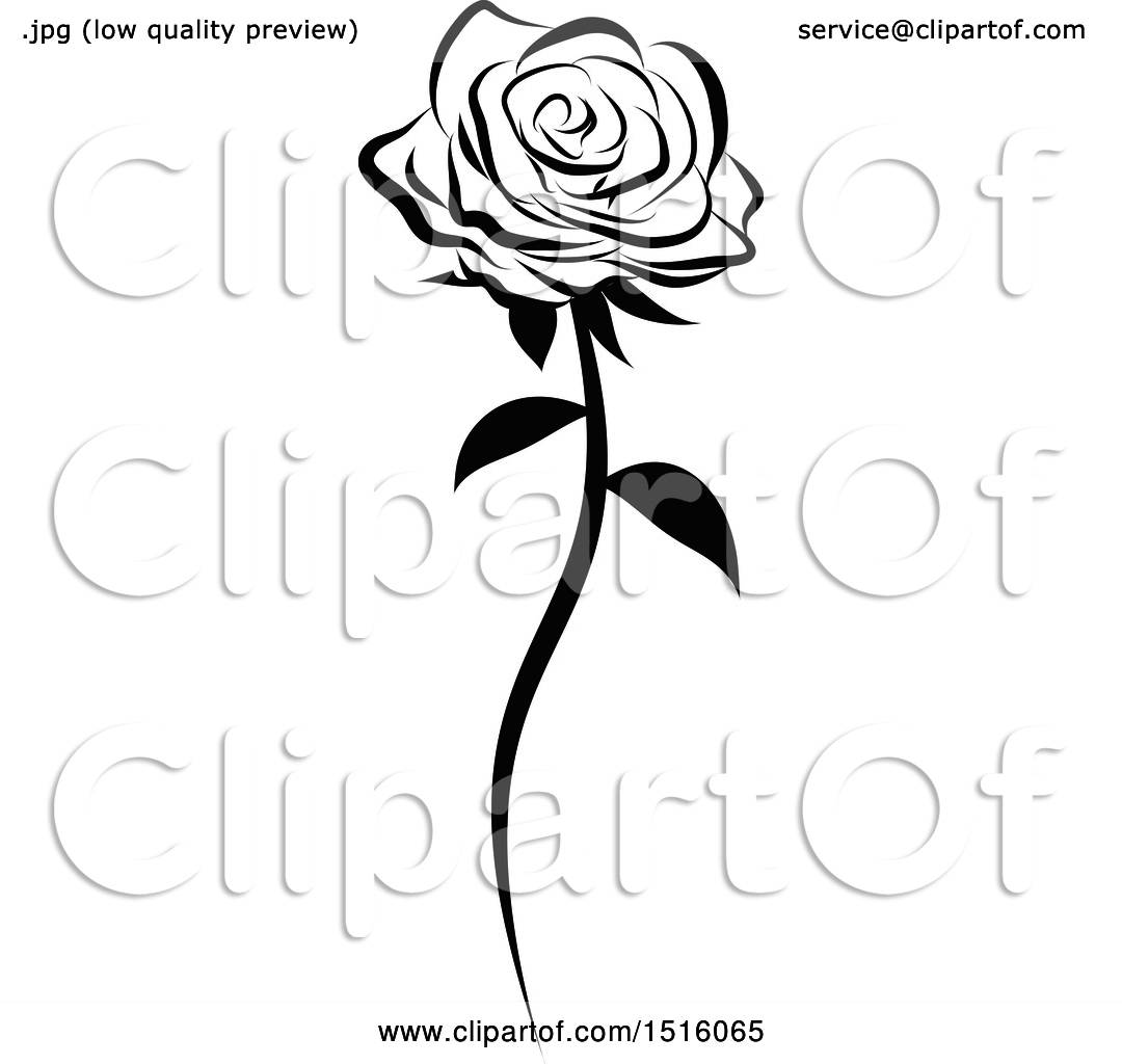 Clipart Of A Black And White Single Rose