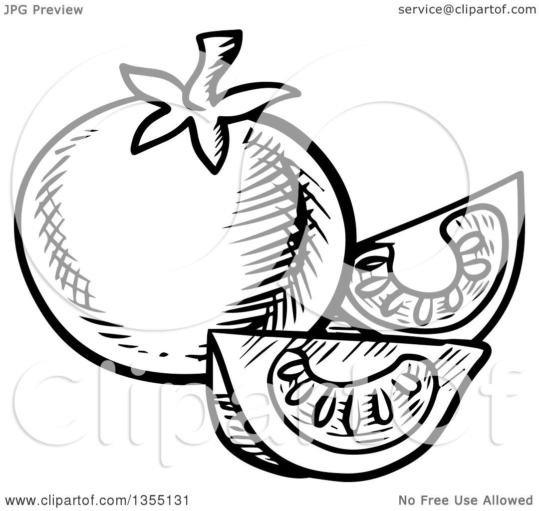 Clipart Of A Black And White Sketched Tomato And Wedges