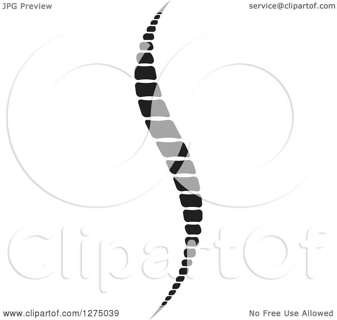 Clipart Of A Black And White Spine 2