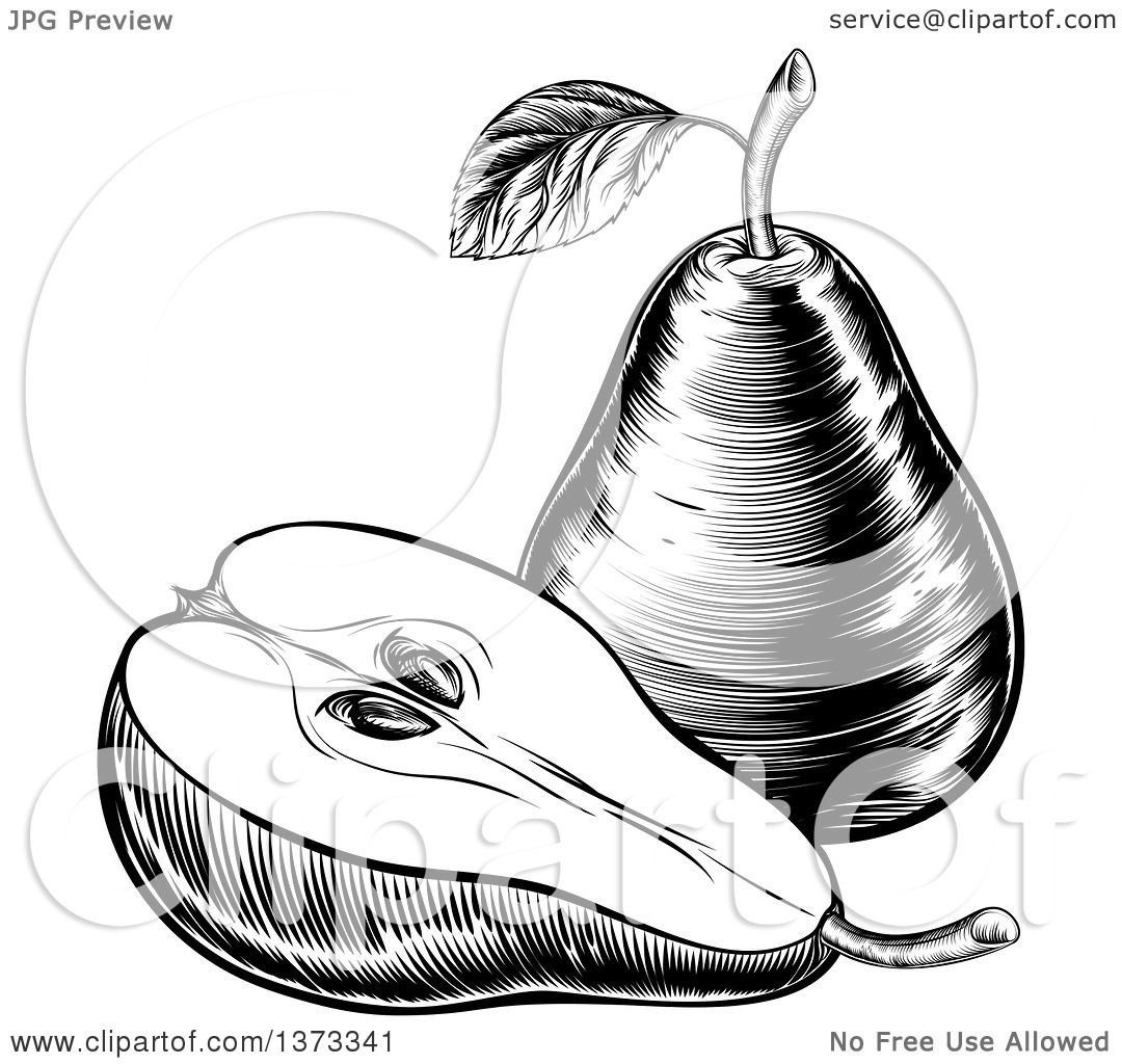 Clipart Of A Black And White Vintage Woodcut Or Engraved