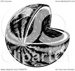 watermelon illustration wedge missing clipart woodcut vector royalty atstockillustration collc0021