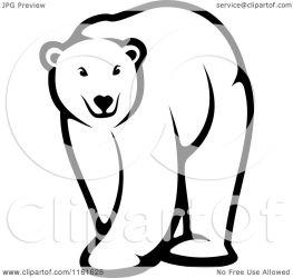 bear polar clipart illustration vector walking clip baby royalty graphics seamartini bears standing clipartpanda tradition sm grizzly cute printable panda