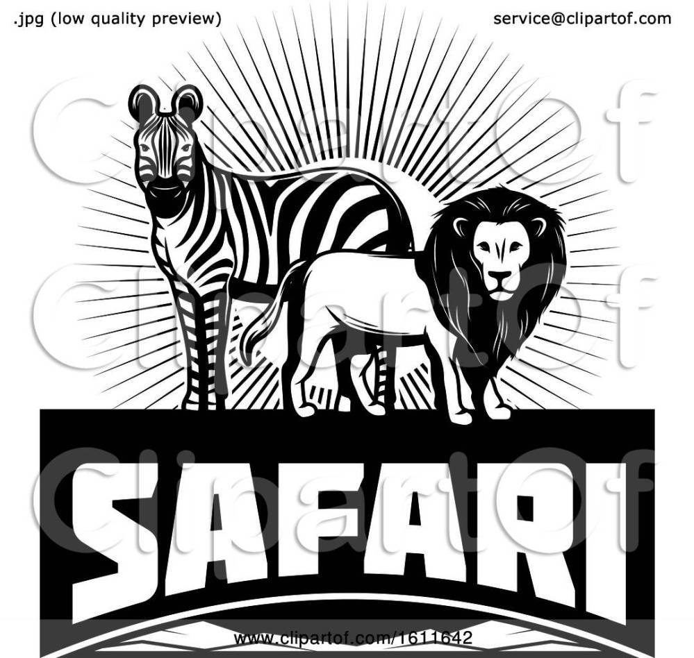 medium resolution of clipart of a black and white zebra and male lion over safari text royalty free