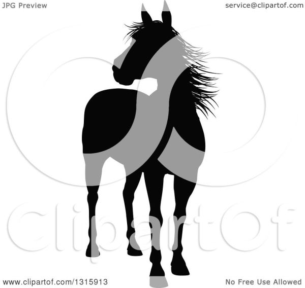 Clipart Of Black Silhouetted Horse - Royalty Free Vector