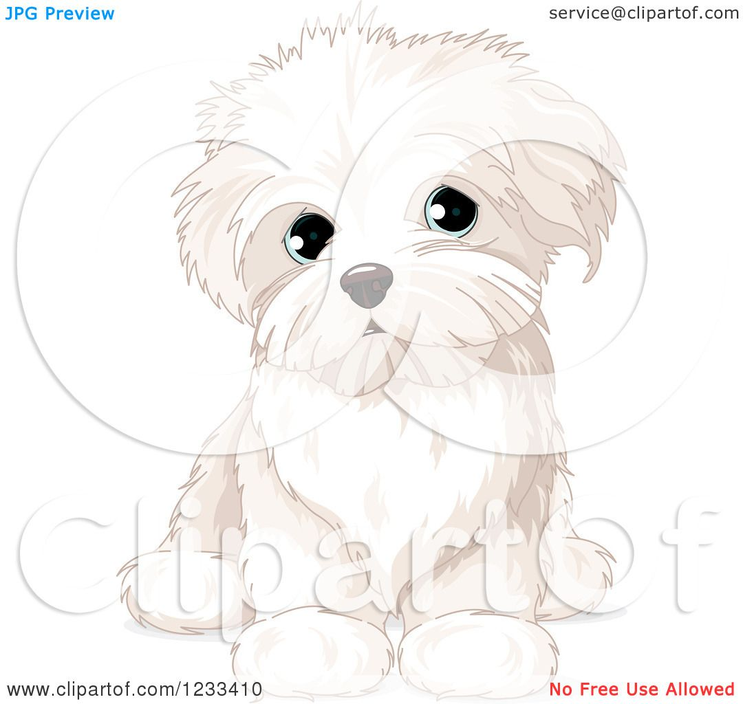 hight resolution of clipart of a cute bichon frise or maltese puppy dog sitting royalty free vector illustration