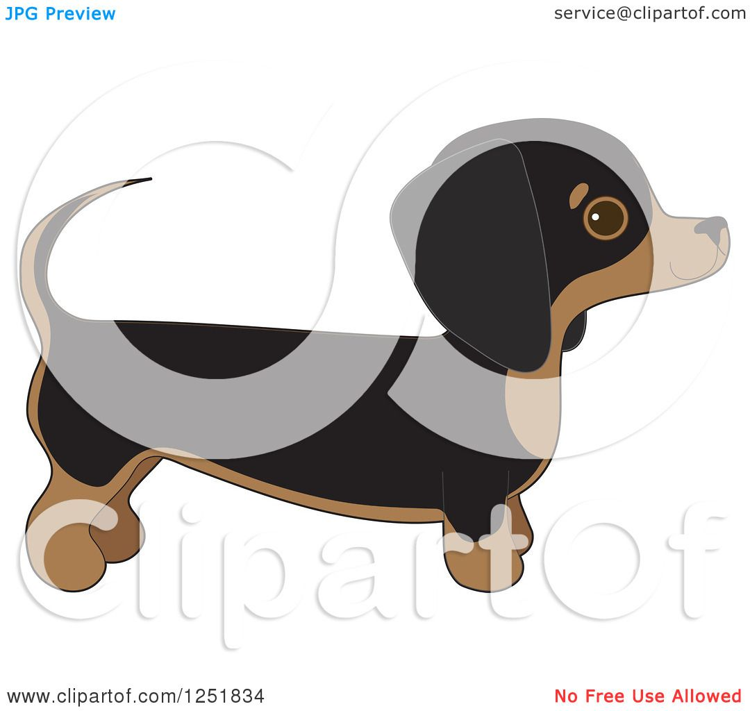 hight resolution of clipart of a cute dachshund dog in profile royalty free vector illustration by maria bell