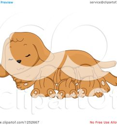 clipart of a cute dog nursing her puppies royalty free vector illustration by bnp design [ 1080 x 1024 Pixel ]