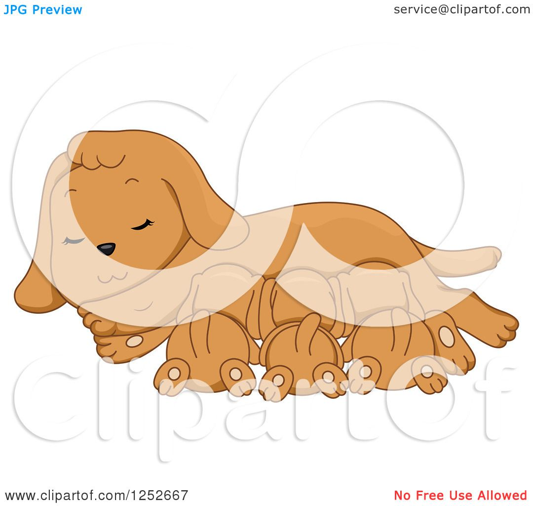 hight resolution of clipart of a cute dog nursing her puppies royalty free vector illustration by bnp design