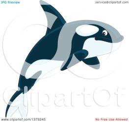 whale orca killer jumping cute clipart illustration royalty alex clip vector bannykh