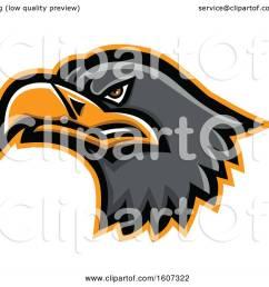 clipart of a eurasian sea eagle mascot head royalty free vector illustration by patrimonio [ 1080 x 1024 Pixel ]