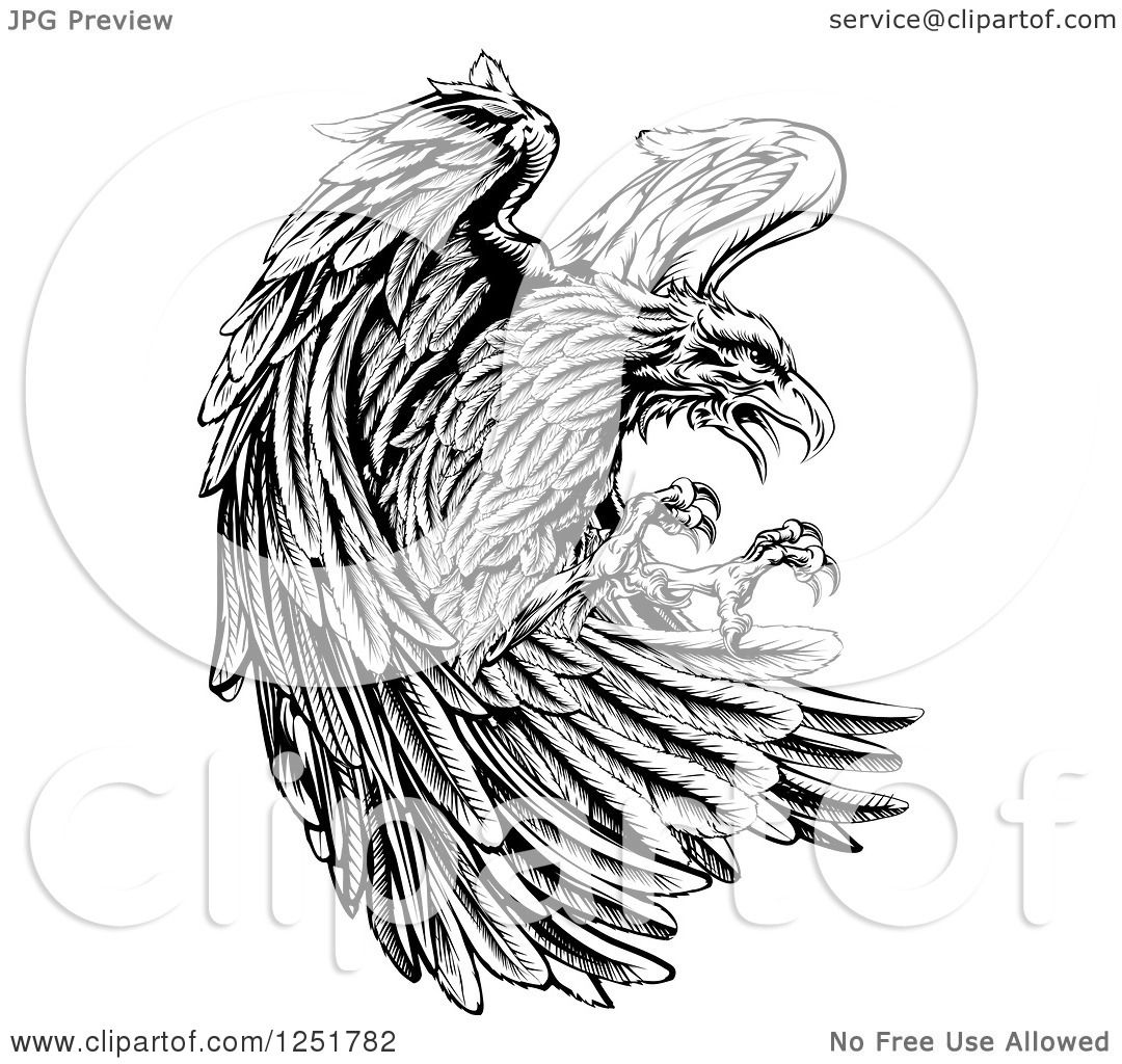 Clipart Of A Fierce Black And White Eagleing