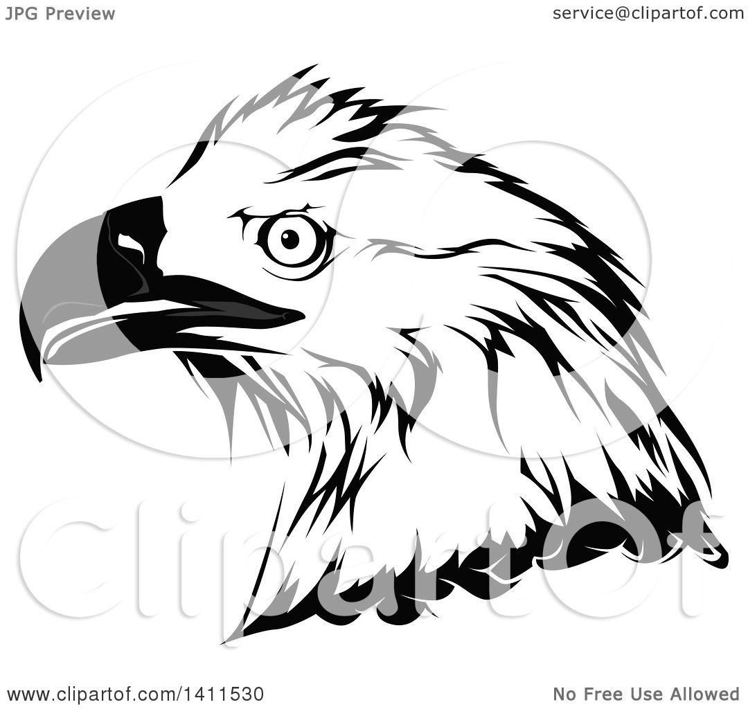 Clipart Of A Grayscale Eagle Head