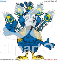 clipart of a peacock holding a thumb up royalty free vector illustration by dennis holmes designs [ 1080 x 1024 Pixel ]