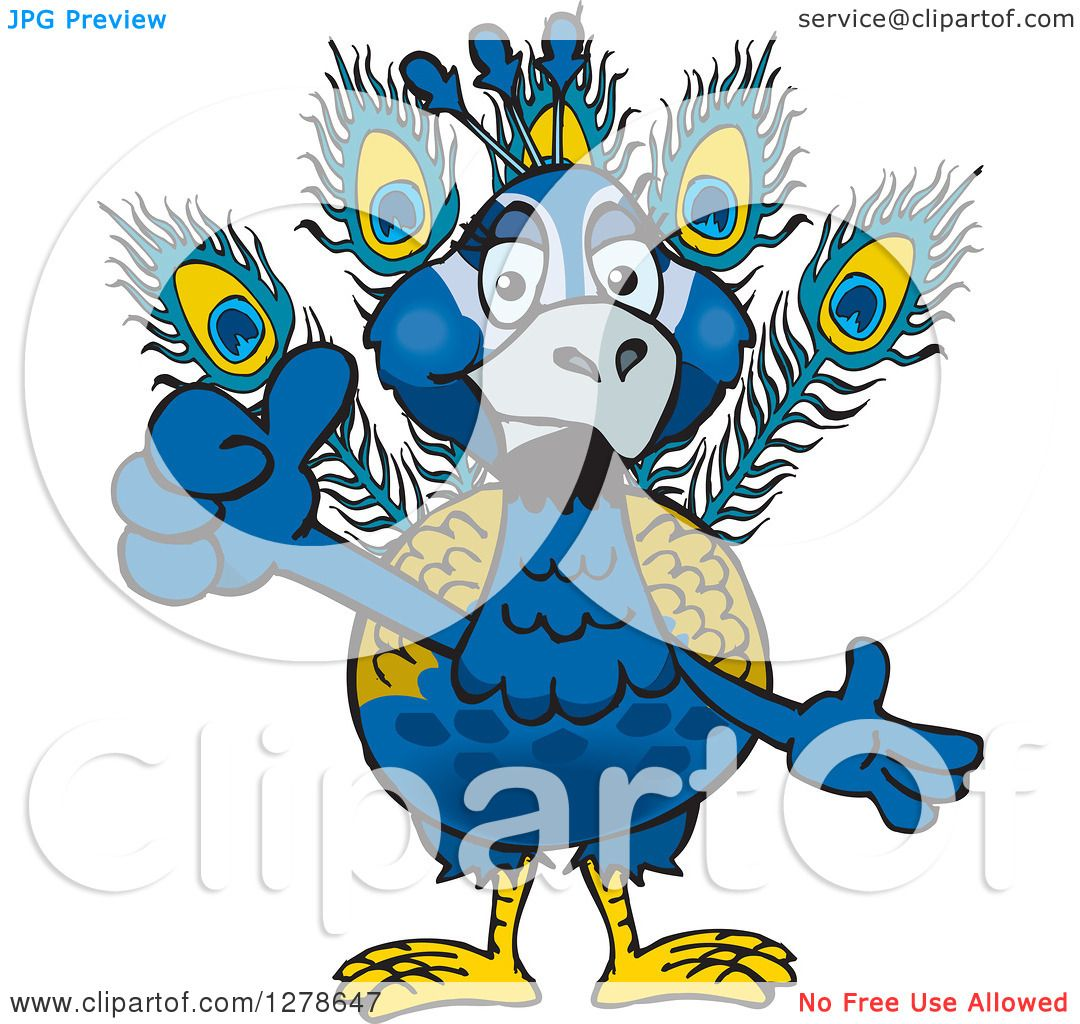hight resolution of clipart of a peacock holding a thumb up royalty free vector illustration by dennis holmes designs