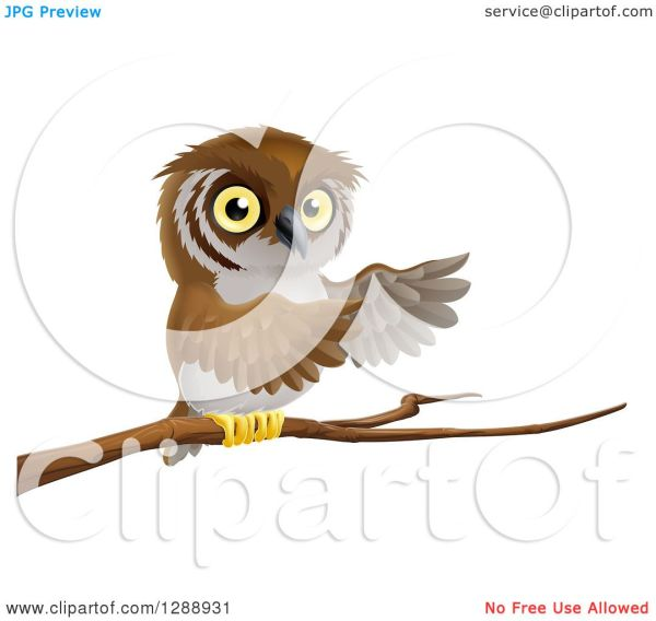Clipart Of Perched Owl Presenting With Wings Tree Branch - Royalty Free Vector
