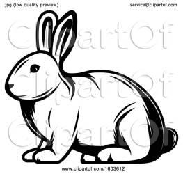 rabbit clipart illustration vector royalty tradition sm clip collc0169