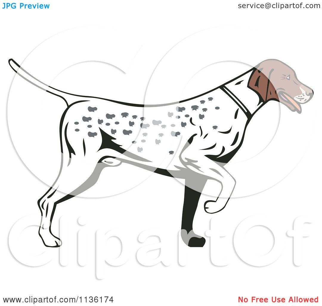 Clipart Of A Retro Pointer Hunting Dog