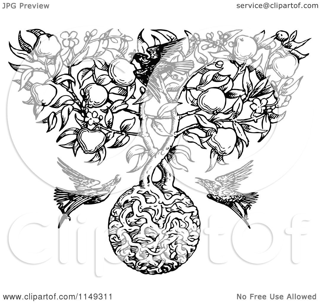 Clipart Of A Retro Vintage Black And White Apple Tree With