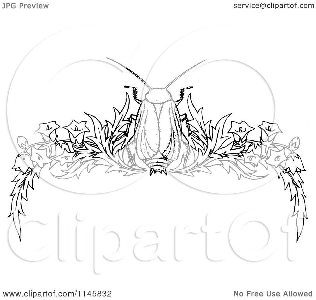 Clipart Of A Retro Vintage Black And White Beetle And